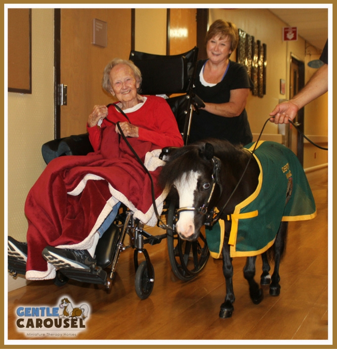 Magic Little Hero Horse Hospital VA Gentle Carousel Therapy Horses 666x688.jpg