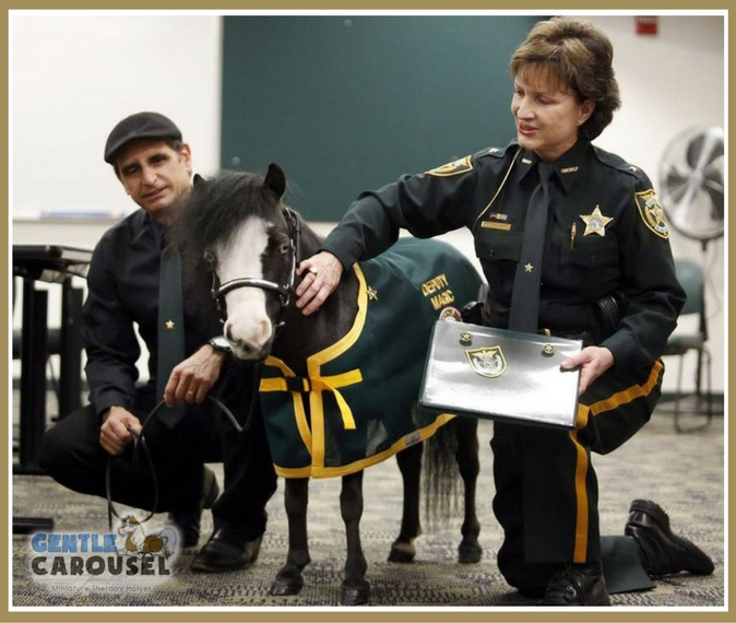 little hero horse magic therapy horses sheriff deputy 675x570