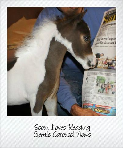scout reading newsletter 402x482
