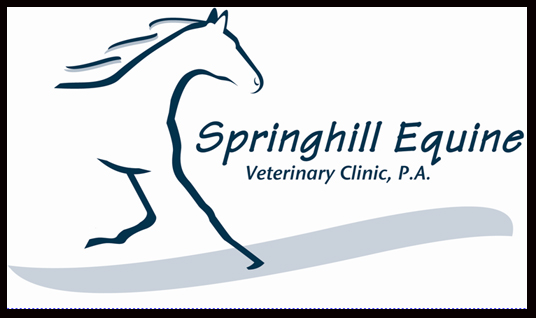 Sponsor springhill therapy horses