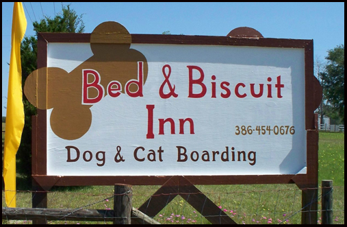 Sponsor Bed Biscuit Therapy Horses