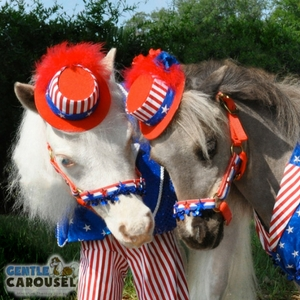 What Horse Are You Gentle Carousel Happy Fourth of July 300x300